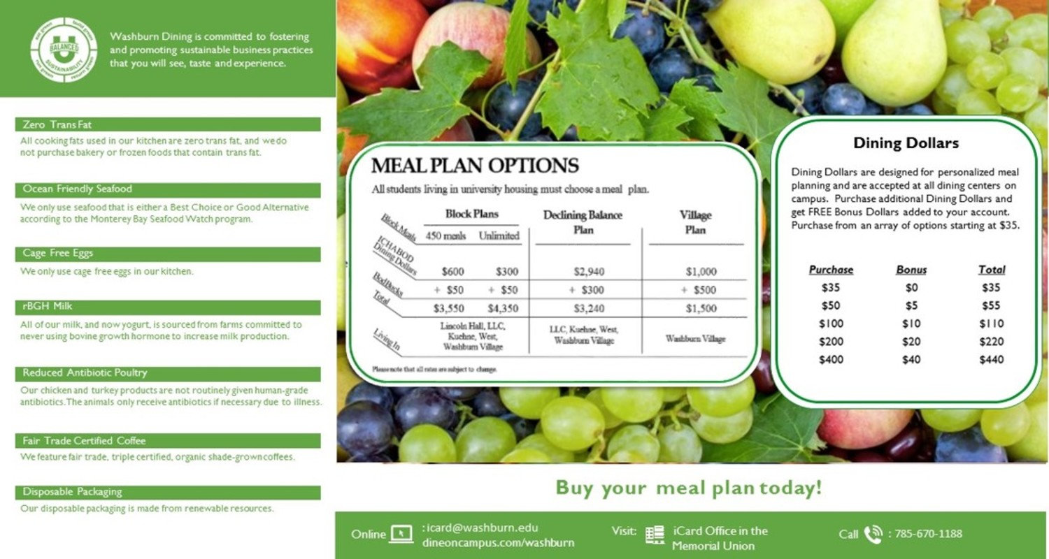 Chart for Meal Plan Options